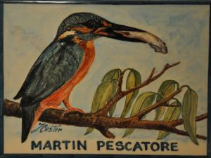 Martin Pescatore