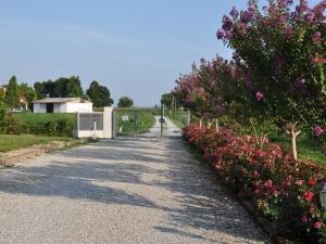 Agriturismo Zorz - Il giardino