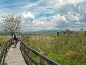 I percorsi ciclabili - Riserva Naturale Foce dell'Isonzo